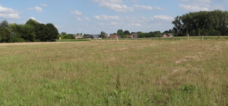 Goedkeuring principe aankoop grond in het binnengebied Grensstraat/Vaartdijk Hofstade